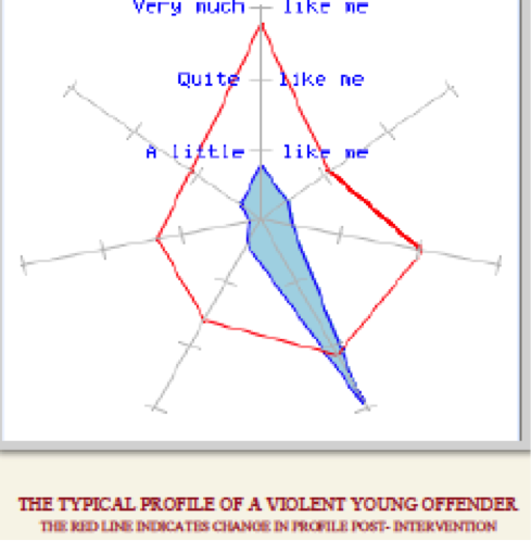 young offender profile